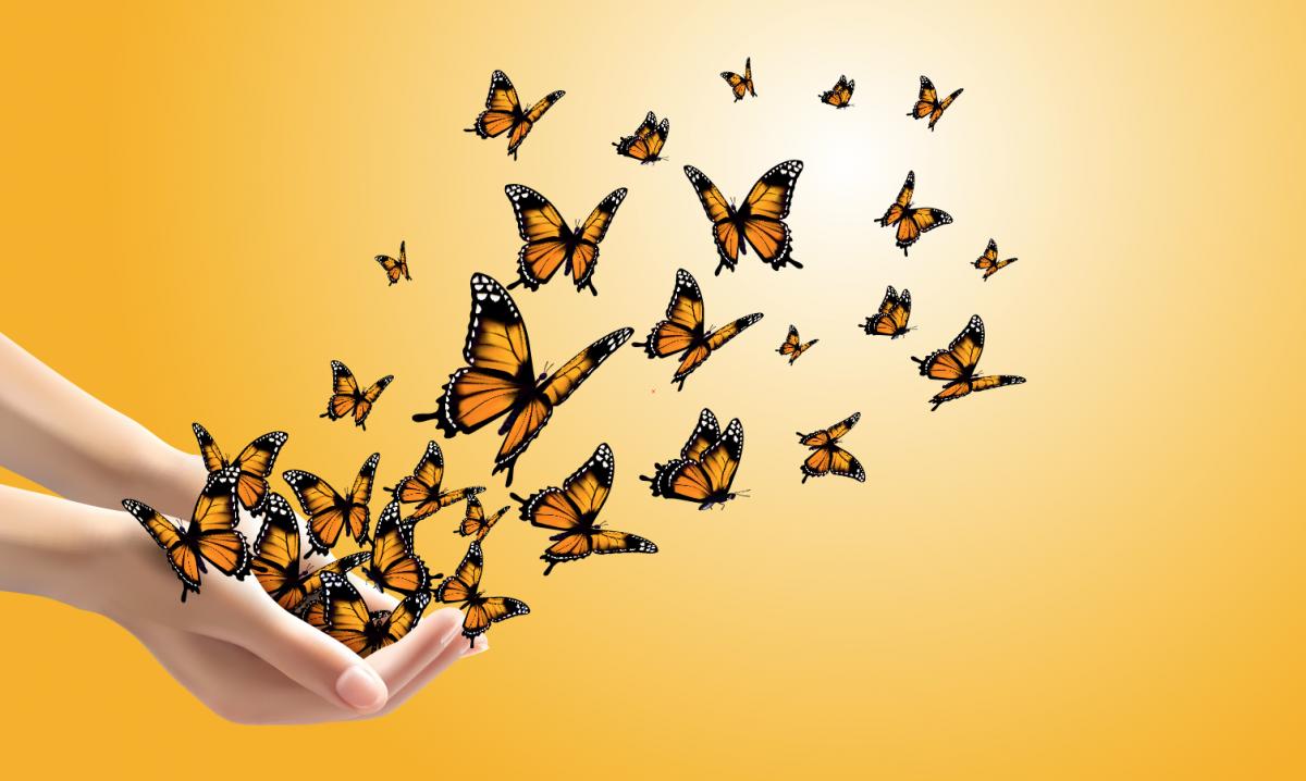vlinders_oporanje